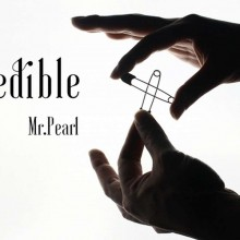 PINcredible by Mr. Pearl