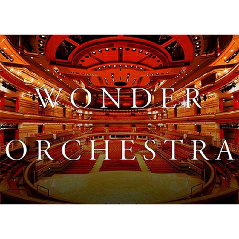 Orquesta Increíble - Arpa de Cristal