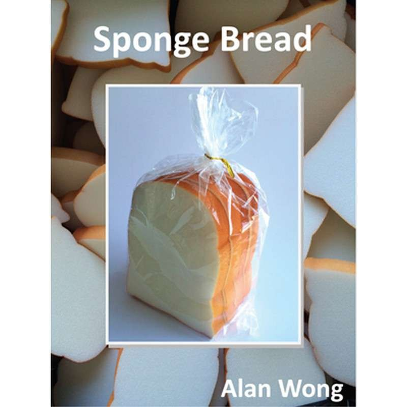Sponge Bread (four slices) by Alan Wong