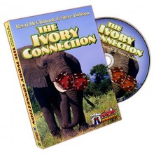DVD - The Ivory Connection - Reed McClintock and Steve Dobson