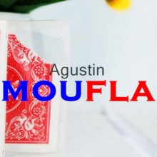 Camouflage by Agustin video DESCARGA