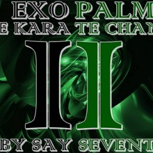 EXOPALM THE KARATE CHANGE by SaysevenT video DOWNLOAD