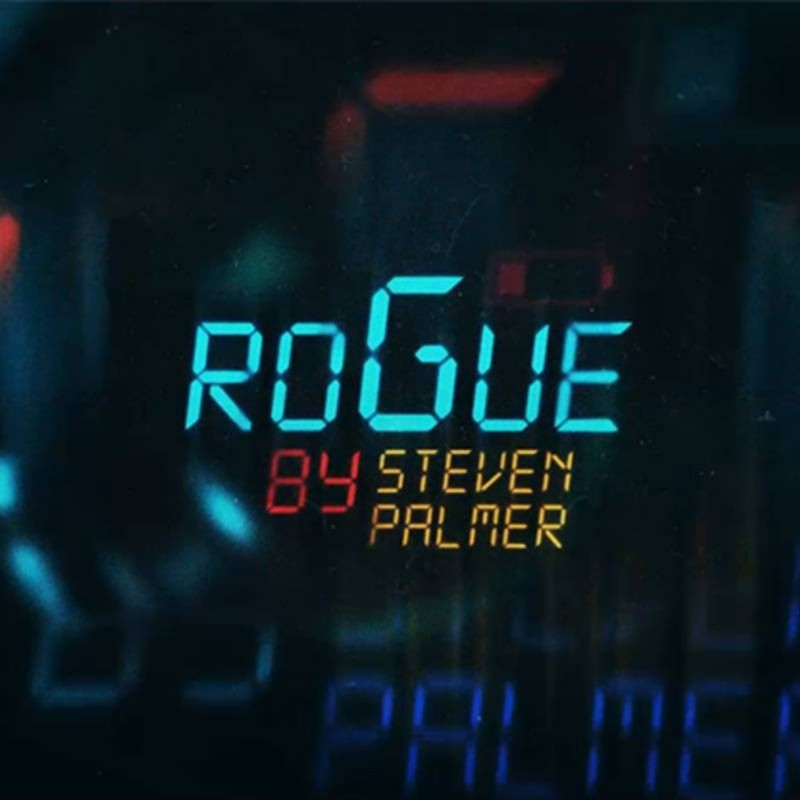 ROGUE Easy To Do Mentalism with Cards by Steven Palmer video DESCARGA
