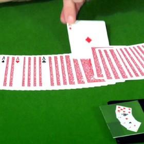 Magia Con Cartas Perfect Poker de Dominique Duvivier TiendaMagia - 4
